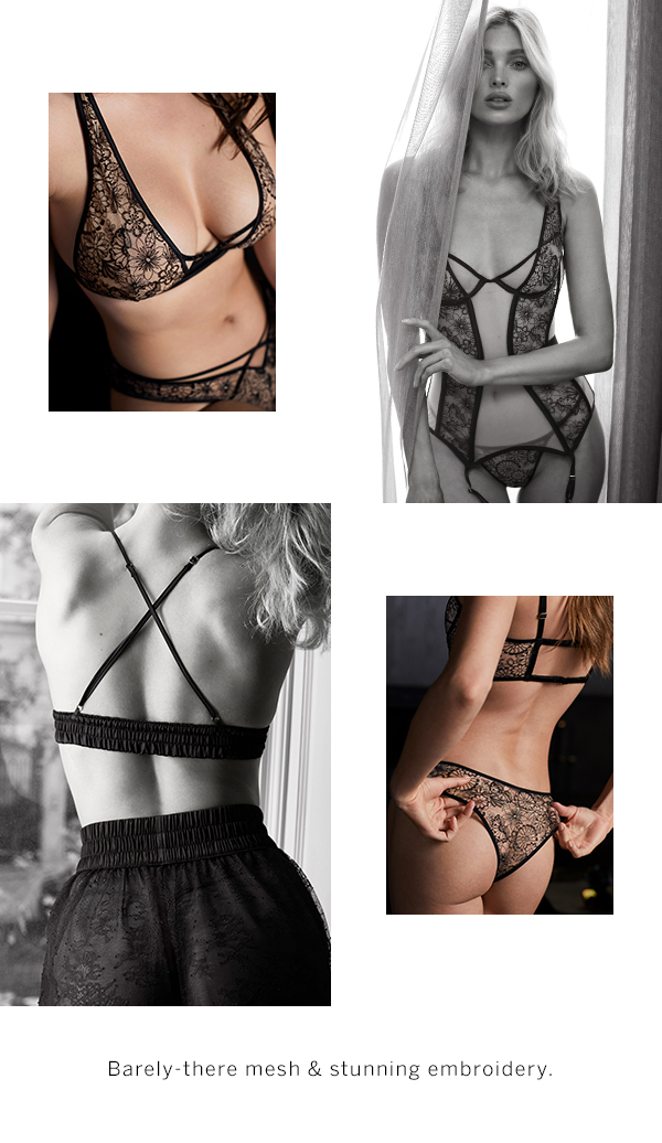 Barely-there Mesh & Stunning Embroidery.